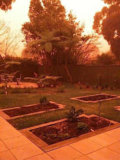 redyard.jpg