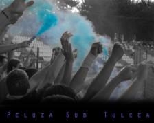 wallpaper delta tulcea