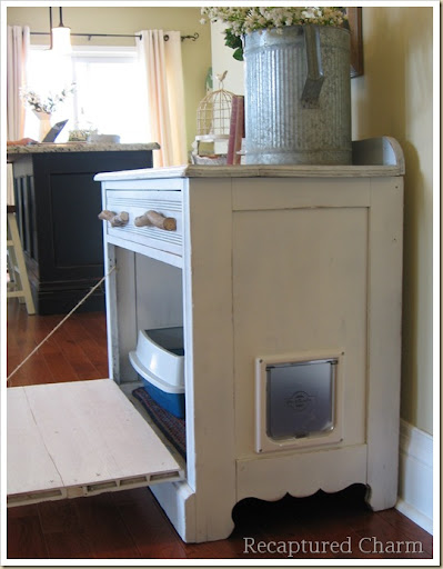 Old Cabiinet To Litterbox 044