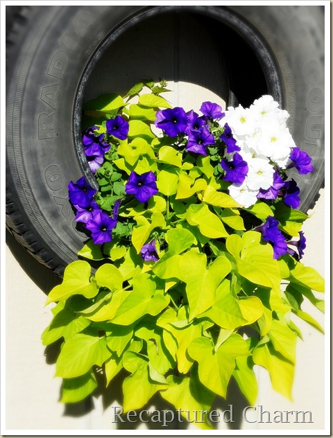 Recaptured charm ever tire of flowers - Painted tires for flowers ...