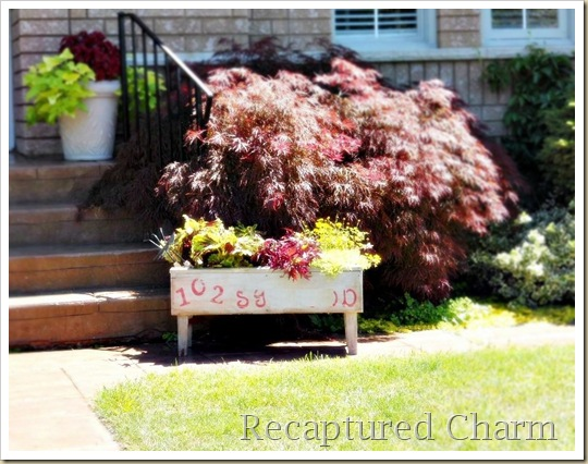 address planter 015b