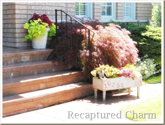 address planter 026a