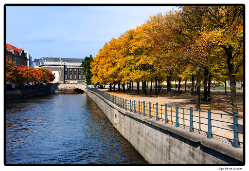 20101018 autumn
