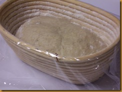 basic-savory-bread-dough 015