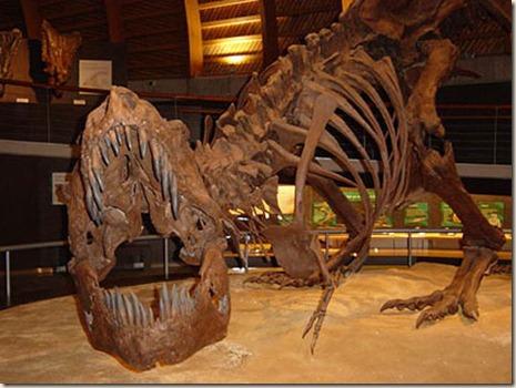 dinosaurios2_8_11_2008