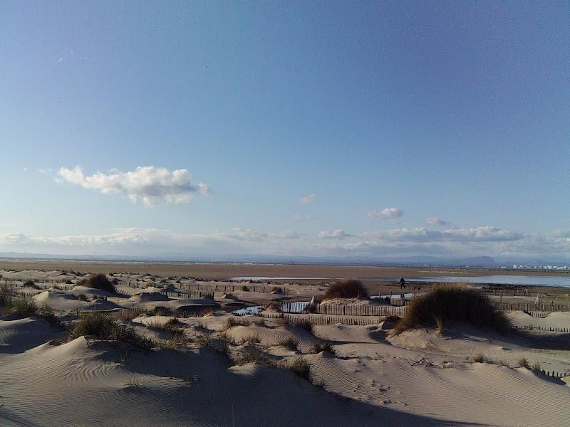 Etat de la plage à l'espi pour ce week. PICT0021