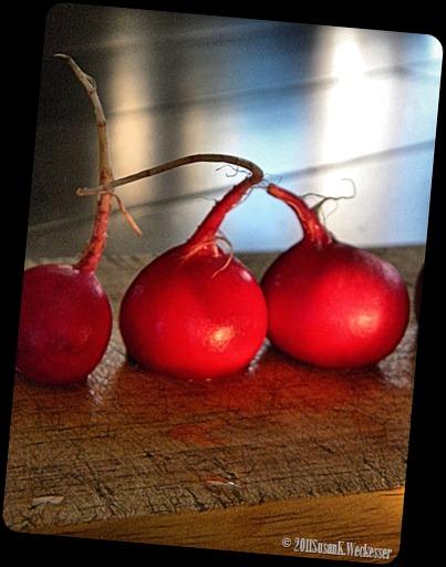radishes 4