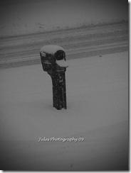 SNOW! 039 copy