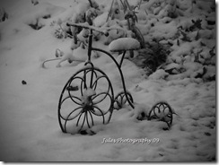 SNOW! 036 edited