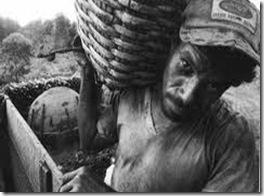 trabalho escravo hoje 2