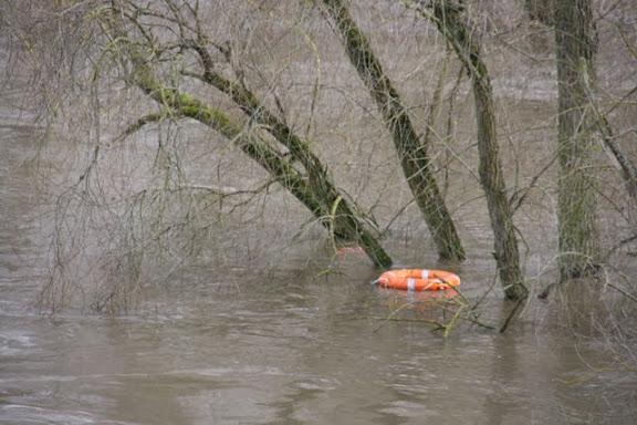 http://lh4.ggpht.com/_uzLsIJX7LLU/TTH8ckc4odI/AAAAAAAACxw/rT394_YKseI/s576/regensburg-hochwasser-15012011IMG_1758.JPG