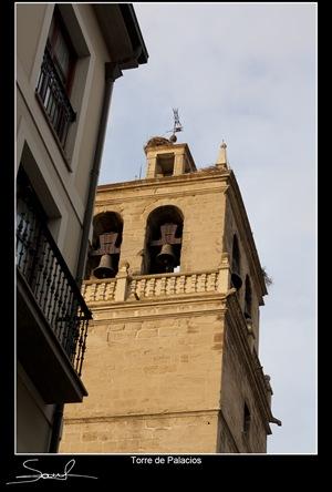 Torre de Palacios