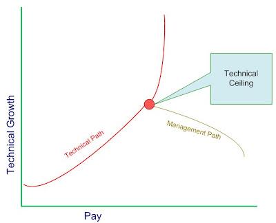 Technical Path vs Management Path