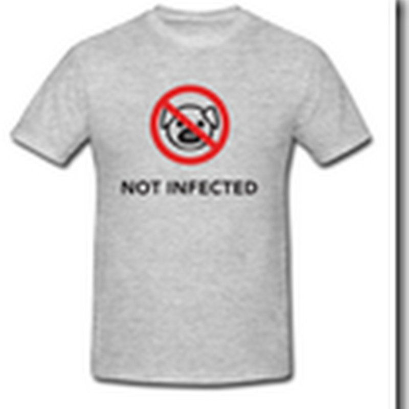 Making Money from the Swine Flu – Shirts and Games Appear on the Web