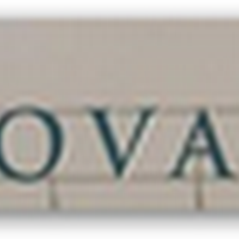 Novartis CEO – House Gets Torched and Family Gravesites Desecrated – Animal Rights Group
