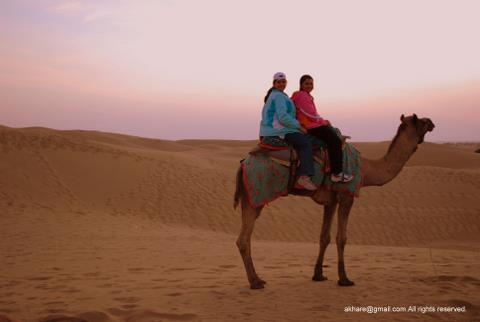 Camel Safari at SAM dunes