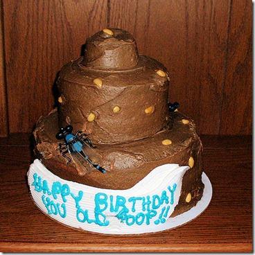 Old poop cake