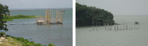BFS catfish cages situated in Laguna Lake before (left) and after Ondoy