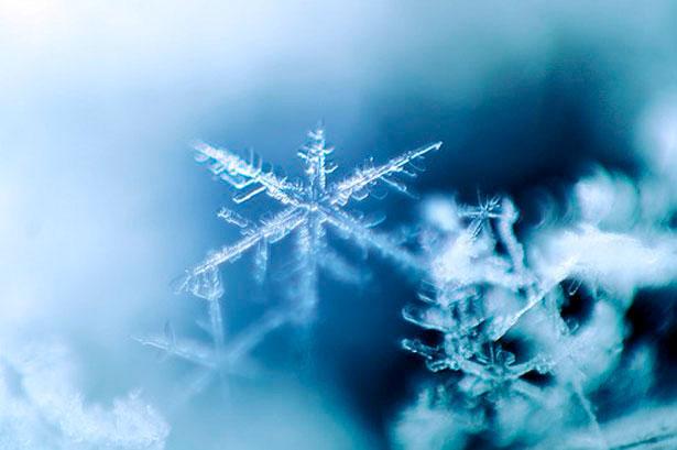 снежинка фото