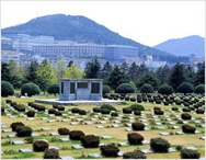 Busan UN Memorial Cemetery and Peace Park