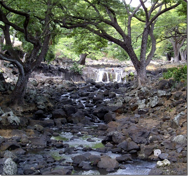Waterfall - Liliuokalani Gardens