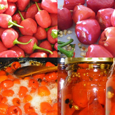 pickled peppadew