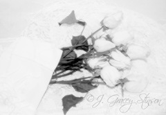 romantic image of white Roses on white lace, ©J. Gracey Stinson