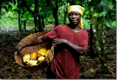 farmer-cocoa