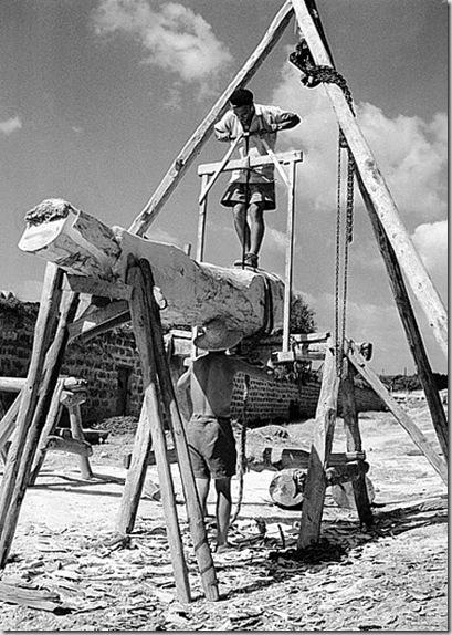 Sega delle assi nel cantiere del boscaiolo, 1950 ca