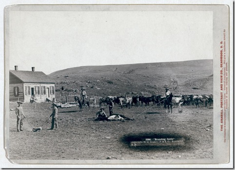 "Title: ""Branding cattle"" Six cowboys branding cattle in front of a house. 1891. Repository: Library of Congress Prints and Photographs Division Washington, D.C. 20540"