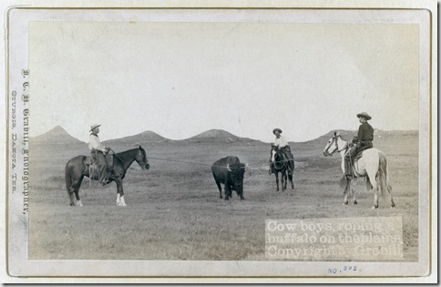 Title: Cowboys, roping a buffalo on the plains Three cowboys on horses roping a buffalo. [between 1887 and 1892] Repository: Library of Congress Prints and Photographs Division Washington, D.C. 20540