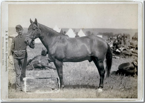 """Title: """"Comanche,"""" the only survivor of the Custer Massacre, 1876. History of the horse and regimental orders of the [7]th Cavalry as to the care of """"Comanche"""" as long as he shall live Side view of horse and front view of a uniformed man holding its bridle. 1887. Repository: Library of Congress Prints and Photographs Division Washington, D.C. 20540"""