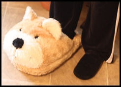 slipper and vac store 004