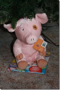 pig 001
