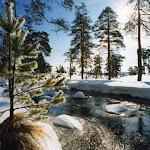 Zlatibor-zima-s4.jpg