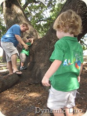 daddy day tree climbing (2)