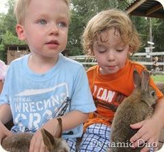bunny boys (4)