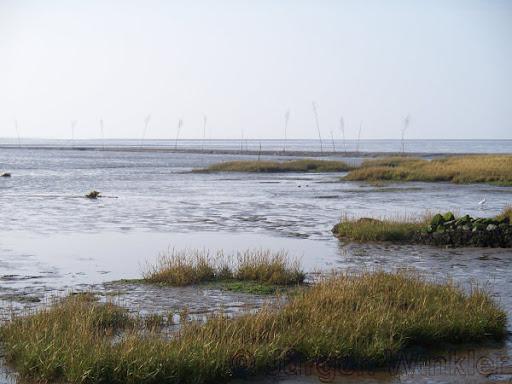 Watt am Ufer bei Wremen