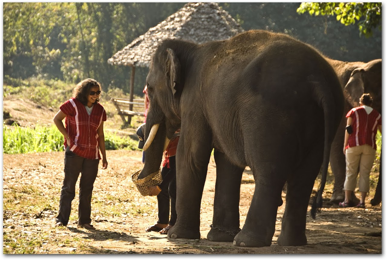 Meeting Bo Chang at Patara Elephant Farm