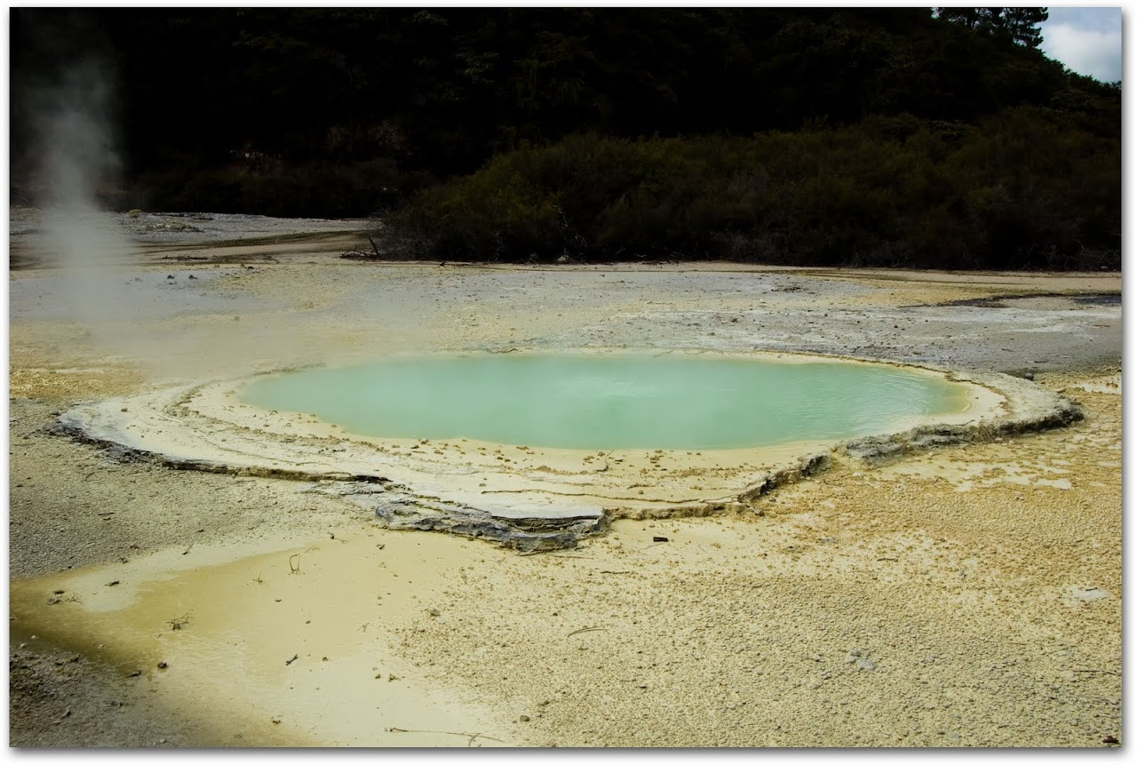 Oyster pool at Wai-o-Tapu