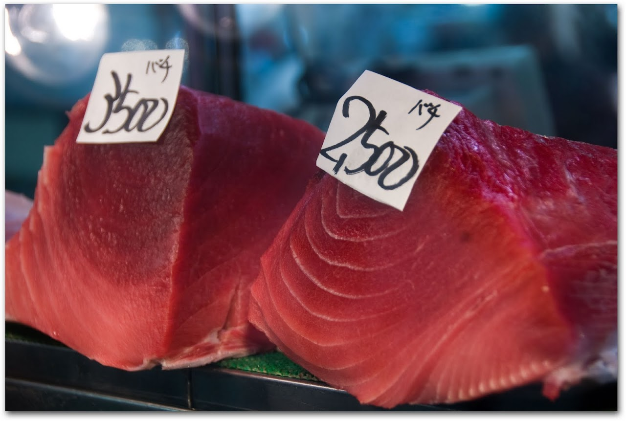 Tuna at Tsujiki Fish Market