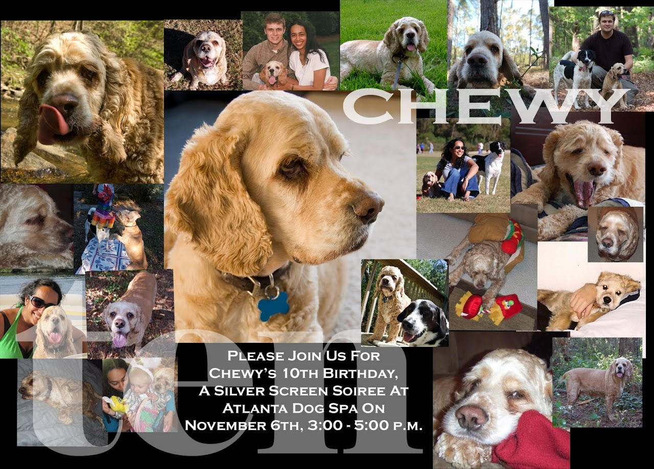 Chewy birthday invitation