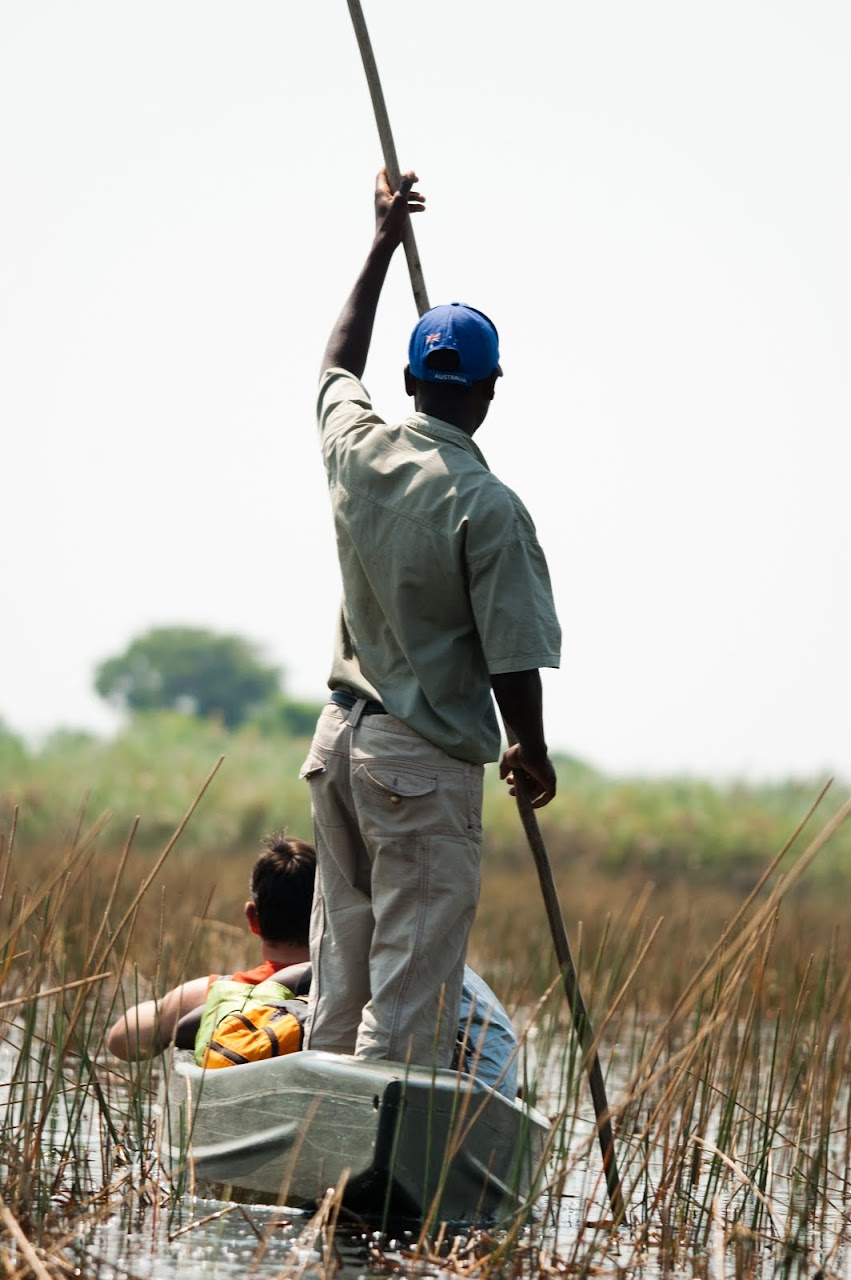 Poling in the Okavango