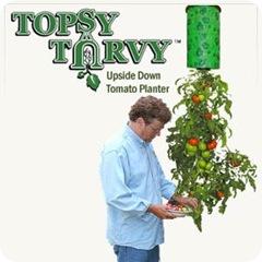 topsy050509