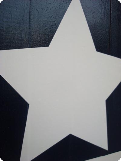 vinyl star