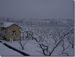 2009 01 03 Νάουσα Χιονόπτωση_006