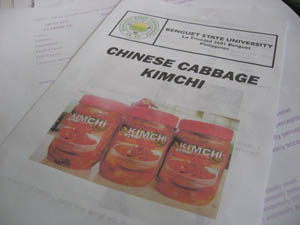 chinese cabbage kimchi