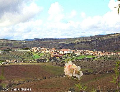 Foto de Castelo Branco com flores de amendoeira