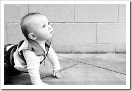 Bev's photo - Curious Reid, 12-13-09