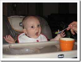 This picture was BEFORE he realized what was on the spoon.  He was not thrilled with the peas, but he ate a respectable amount. 10-20-09
